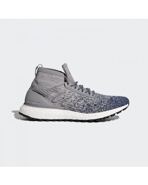 Adidas Ultraboost All Terrain Grey BB6128