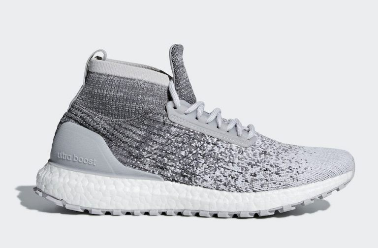 Adidas Ultraboost All Terrain Reigning Champ DB2042